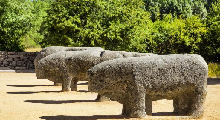 De stieren van Guisando - El Tiemblo - Sierra de Gredos - Spanje